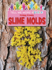 Creepy Crawly Slime Molds Cover Image