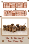 Healthy Glen of Imaal Terriers: How To Take Care Of Them, Training Tips: Treatment For Glen Of Imaal Terriers Cover Image