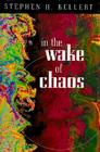 In the Wake of Chaos: Unpredictable Order in Dynamical Systems (Science and Its Conceptual Foundations series) Cover Image