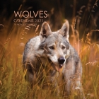 Wolves Calendar 2021: 16 Month Calendar Cover Image