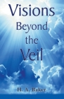 Visions Beyond The Veil Cover Image