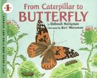 From Caterpillar to Butterfly Big Book (Let's-Read-and-Find-Out Science 1) Cover Image