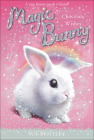Chocolate Wishes (Magic Bunny #1) Cover Image