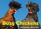 Busy Chickens (A Busy Book) Cover Image