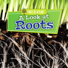 A Look at Roots (Parts of a Plant) Cover Image
