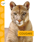 Cougars (Spot Wild Cats) Cover Image