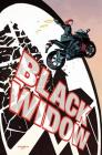 Black Widow Vol. 1: S.H.I.E.L.D.'s Most Wanted Cover Image