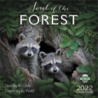 Soul of the Forest 2022 Wall Calendar: Traveling the Globe, Connecting the World Cover Image