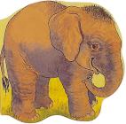 Pocket Elephant (Pocket Pals) Cover Image