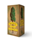 The Grow Your Own Giant Sequoia Kit: Plant the Biggest Tree in the World in Your Very Own Backyard! (Grow Your Own Series) Cover Image