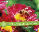Let's Look at Summer: A 4D Book (Investigate the Seasons) Cover Image