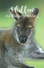 Willow: The Wonderful Wallaby Cover Image