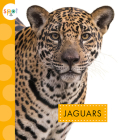 Jaguars (Spot Wild Cats) Cover Image