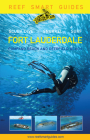 Reef Smart Guides Florida: Fort Lauderdale, Pompano Beach and Deerfield Beach: Scuba Dive. Snorkel. Surf. Cover Image