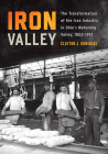 Iron Valley: The Transformation of the Iron Industry in Ohio's Mahoning Valley, 1802-1913 Cover Image
