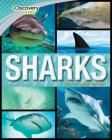Discovery Kids Sharks: Get Up Close to the Oceans' Most Feared Hunters Cover Image