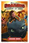 Dragons: Riders of Berk V01: Dragon Down Cover Image