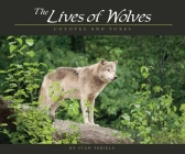 Lives of Wolves, Coyotes and Foxes Cover Image