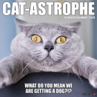 Cat-Astrophe 2020 Wall Calendar Cover Image