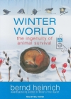 Winter World: The Ingenuity of Animal Survival Cover Image