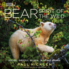 Bear: Spirit of the Wild Cover Image