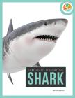 Shark (Spotlight on Nature) Cover Image
