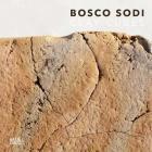 Bosco Sodi: Clay Cubes Cover Image