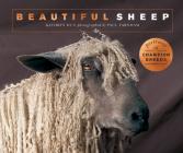 Beautiful Sheep: Portraits of champion breeds (Beautiful Animals) Cover Image