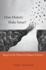 Does History Make Sense? Cover Image