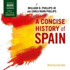 A Concise History of Spain (Cambridge Concise Histories) Cover Image
