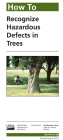 How to Recognize Hazardous Defects in Trees Cover Image