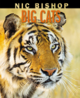 Nic Bishop Big Cats Cover Image