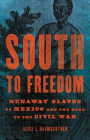 South to Freedom: Runaway Slaves to Mexico and the Road to the Civil War Cover Image