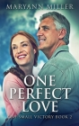One Perfect Love Cover Image