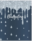2020 Budgeting Planner: Monthly Planner: 2020 Monthly Financial Budget Planner: Bill Organizer Notebook: Weekly & Monthly Calendar Expense Tra Cover Image