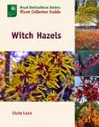 Witch Hazels Cover Image