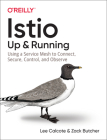 Istio: Up and Running: Using a Service Mesh to Connect, Secure, Control, and Observe Cover Image