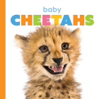 Baby Cheetahs (Starting Out) Cover Image