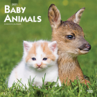 Baby Animals 2021 Square Cover Image
