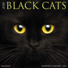 Just Black Cats 2021 Wall Calendar Cover Image