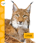 Lynx (Spot Wild Cats) Cover Image