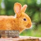 Bunnies Calendar 2021: 16 Month Calendar Cover Image