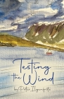 Testing the Wind Cover Image