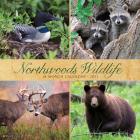 Northwoods Wildlife 2021 Wall Calendar Cover Image