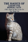 The Basics Of Caring For Bengal Cats: A Vet's Guide On How To Care For Your Bengal Cats: Information About Bengal Cats Cover Image