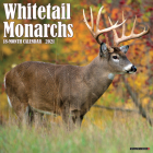 Whitetail Monarchs 2021 Wall Calendar Cover Image