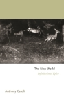 The New World: Infinitesimal Epics Cover Image