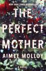 The Perfect Mother: A Novel Cover Image