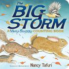 The Big Storm: A Very Soggy Counting Book (Classic Board Books) Cover Image
