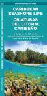 Caribbean Seashore Life (Criaturas del Litoral Caribeno): A Guide to the Life in the Littoral Zone (Bilingual) (Pocket Naturalist Guide) Cover Image